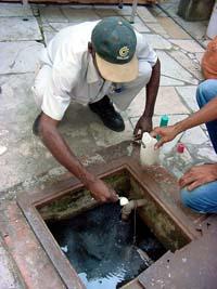 Estricta vigilancia contra el Aedes aegypti