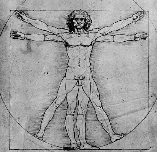 Terminologia Anatomica Medica De Las Posiciones