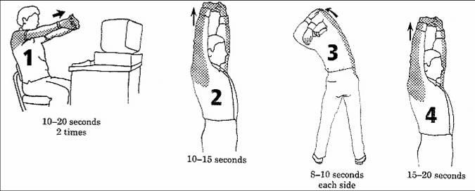 La curvatura de la columna vertebral a los niños que médico