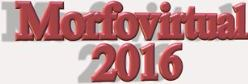 Morfovirtual 2016