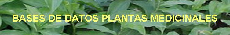 Bases de datos plantas medicinales