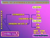 Papel de la vitamina K en a coagulación