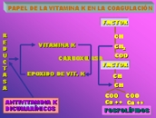 Papel de la vitamina K en a coagulaci�n