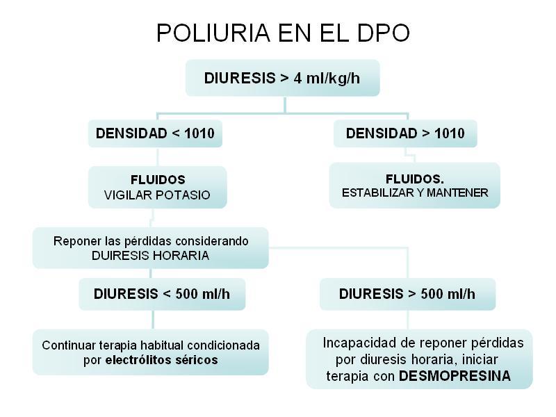 Algoritmo Poliuria